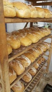 co'pains ocquier